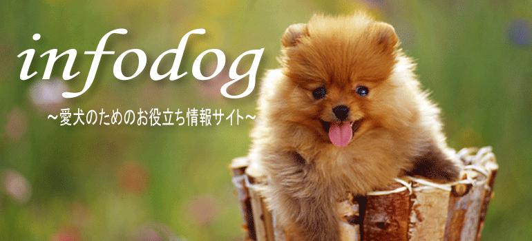 愛犬の役に立つお役立ちグッズをご紹介します。